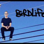 AronMiller Birdlife 01 e1595884830355 150x150 - About Stellar Sound Labs Professional Mastering